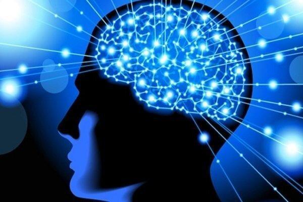 بیش از 140طرح پژوهشی علوم شناختی درحال اجرا است