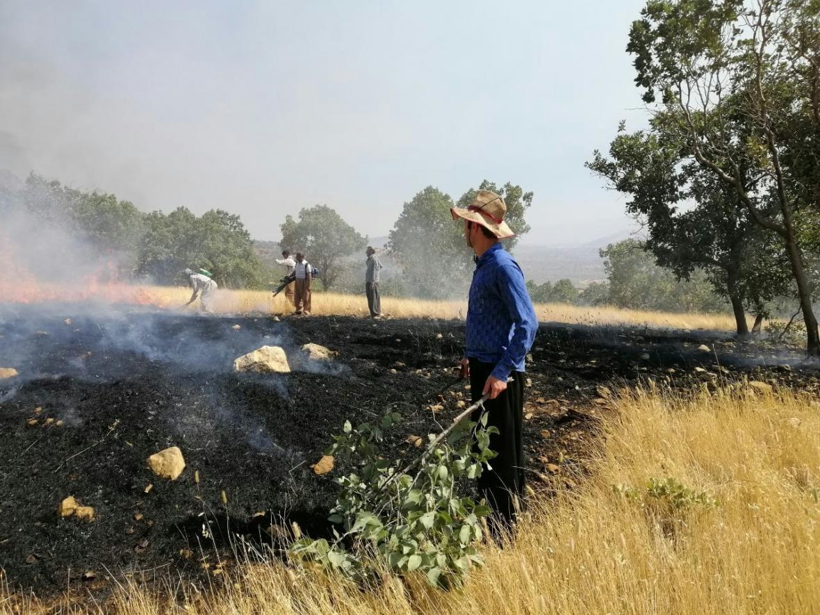 خبرنگاران 130 هکتار از مزارع چرام در آتش سوخت