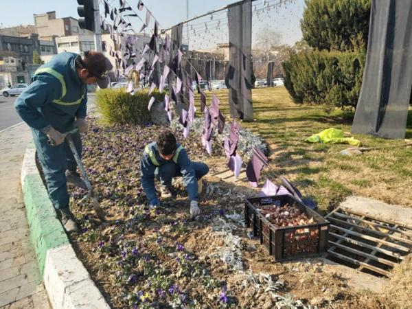 عملیات کاشت 15هزار پیاز لاله در منطقه 20 آغاز شد